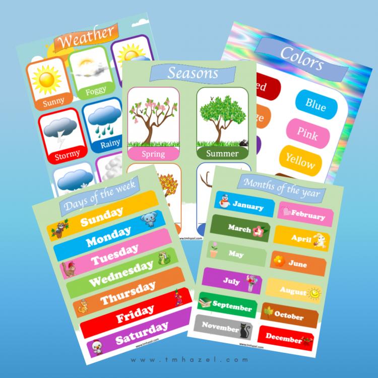 5 Educational Posters For TODDLERS. Great For Preschool, Homeschooling, Kindergarten.