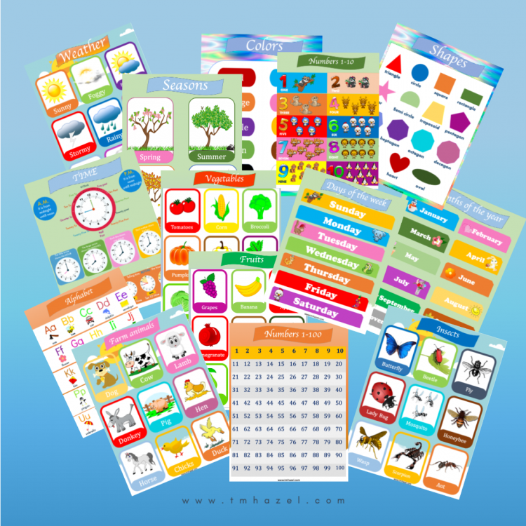14 COLORFUL Educational Posters For Preschoolers. Great For Preschool, Homeschooling, Kindergarten.