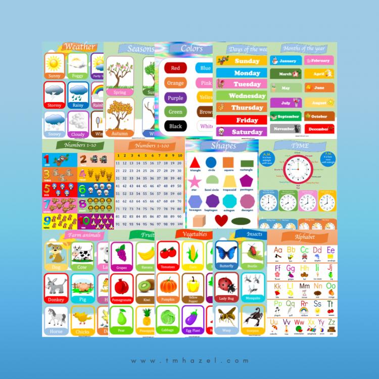 14 COLORFUL Educational Posters For Preschoolers. Great For Preschool, Homeschooling, Kindergarten.